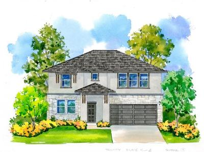 Leander Single Family Home For Sale: 225 Tulum Terrace
