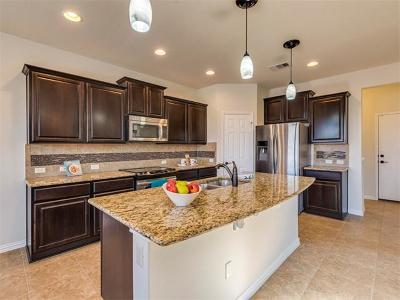 Travis County Single Family Home For Sale: 10108 Wading Pool Path
