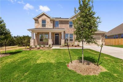 Austin Single Family Home For Sale: 581 Stone River Dr