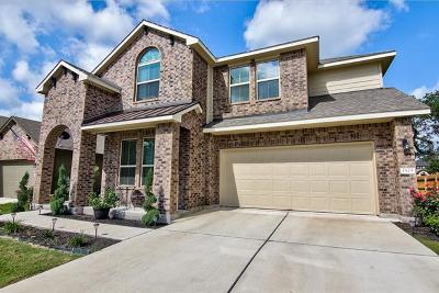 Leander Single Family Home For Sale: 1529 Hamiltons Way