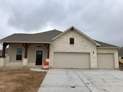 Pflugerville Single Family Home For Sale: 20308 Crested Caracara Ln