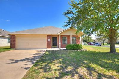 Round Rock Single Family Home For Sale: 100 Chandler View Trl
