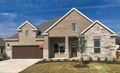 Leander Single Family Home For Sale: 1721 Hollowback Dr