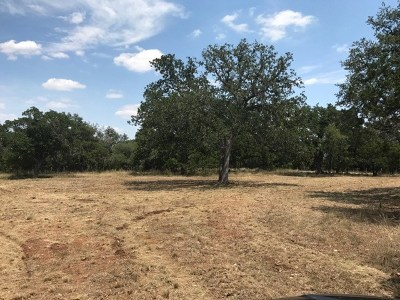Wimberley Residential Lots & Land For Sale: 201 Plainview Rd
