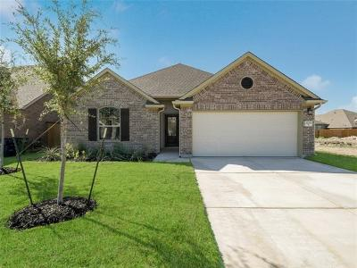 Leander Single Family Home For Sale: 2224 Bonavista Way