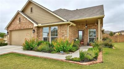 Kyle Single Family Home For Sale: 131 Bobolink Cv