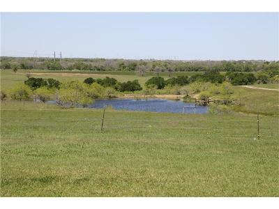 Hutto Farm For Sale: Melber Lane