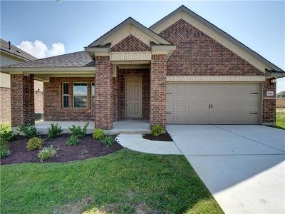 Williamson County Single Family Home For Sale: 1032 Feldspar Steam Way