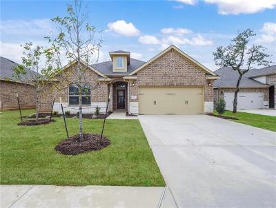 Georgetown TX Single Family Home For Sale: $320,136