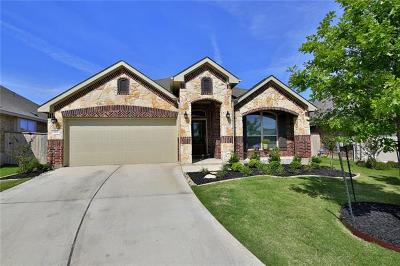 Georgetown Single Family Home Pending - Taking Backups: 1113 Fountain Grass Way