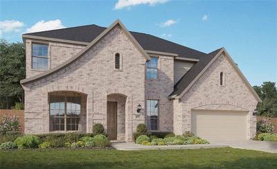 Pflugerville Single Family Home For Sale: 20624 Mouflon Dr