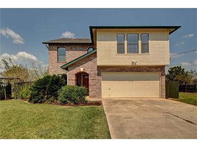 Kyle Single Family Home For Sale: 8020 Milo Way