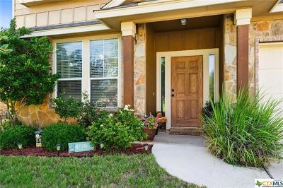 San Marcos Single Family Home For Sale: 623 Irvin Dr