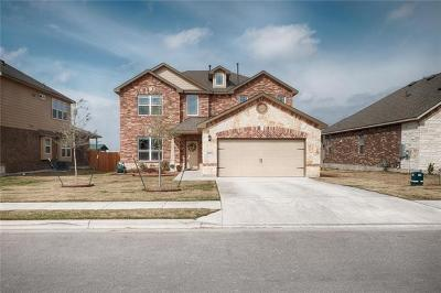 Round Rock Single Family Home For Sale: 8054 Mozart St