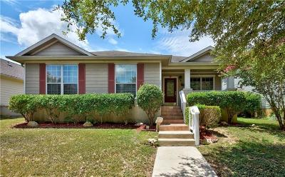 Kyle Single Family Home For Sale: 281 Hutton