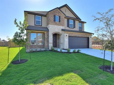 Pflugerville Single Family Home For Sale: 20312 Great Egret Ln