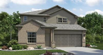 Hays County, Travis County, Williamson County Single Family Home For Sale: 5725 Southerner Way