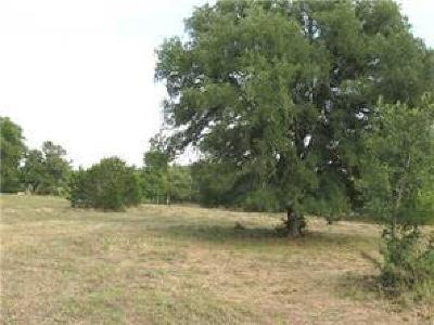 Hays County Residential Lots & Land For Sale: 24252 Ranch Road 12