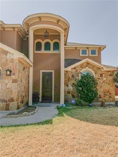 Salado TX Single Family Home For Sale: $320,000