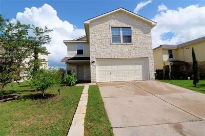 Del Valle Single Family Home For Sale: 6801 Panda Royle Dr