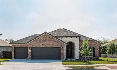 Pflugerville Single Family Home For Sale: 20013 Navarre Ter