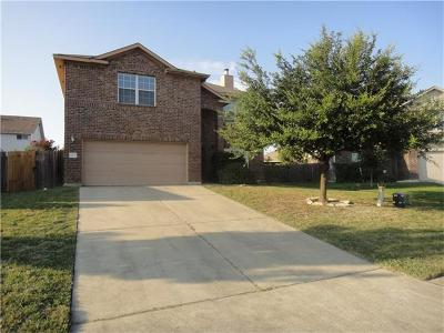 Travis County, Williamson County Single Family Home For Sale: 1028 Zeus Cir