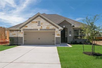Round Rock Single Family Home For Sale: 3208 Pablo Cir