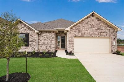 Hays County Single Family Home For Sale: 504 Academy Oaks Dr