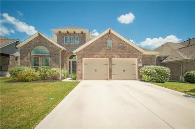 Pflugerville Single Family Home For Sale: 20809 Sand Lark Ln