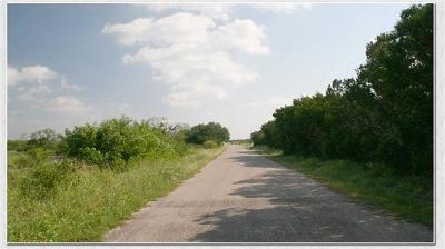 Lampasas Farm For Sale: TBD County Road 101