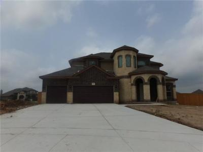 San Marcos Single Family Home For Sale: 156 Emery Oak Ct