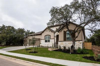 Georgetown Single Family Home For Sale: 249 Axis Loop