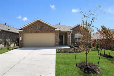 Del Valle Single Family Home For Sale: 15409 Summer Ray Dr