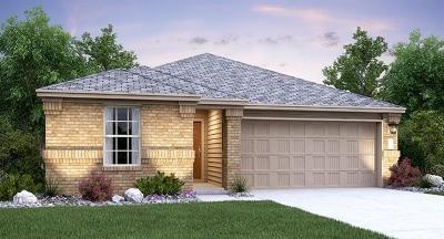 Kyle Single Family Home For Sale: 124 Jackson Blue Ln