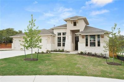Leander Single Family Home For Sale: 2509 Belen Dr