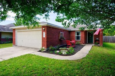 Kyle Single Family Home For Sale: 235 Fall Creek Dr