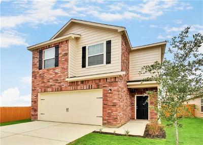 Kyle Single Family Home For Sale: 1445 Breanna Lane