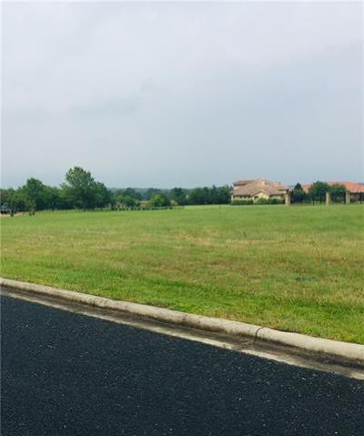 Georgetown Residential Lots & Land For Sale: 100 Hammer Stone Cv