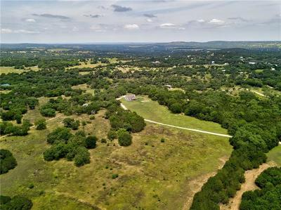 Dripping Springs Single Family Home For Sale: 2100 Pursley Rd
