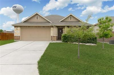 New Braunfels Single Family Home For Sale: 1820 Strawcove