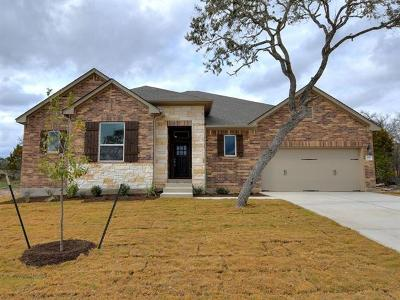 Kyle Single Family Home For Sale: 489 Cypress Forest Dr