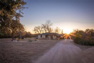 Liberty Hill Single Family Home For Sale: 2151 Double File Trce