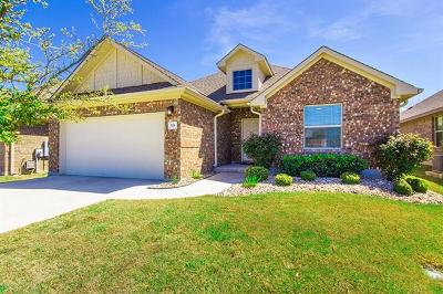 Leander Single Family Home For Sale: 528 S Brook Dr