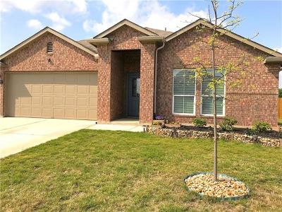 Hutto Single Family Home For Sale: 509 Luna Vista Dr