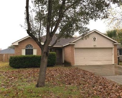 Kyle  Single Family Home For Sale: 131 Christopher Cv