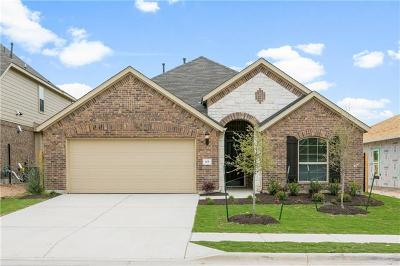 Leander Single Family Home For Sale: 105 Concho Creek Loop