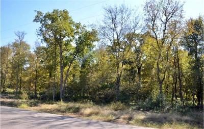 Bastrop County Residential Lots & Land For Sale: 165 Bunny Run