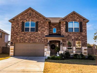 Buda Single Family Home For Sale: 373 Red Morganite Trl