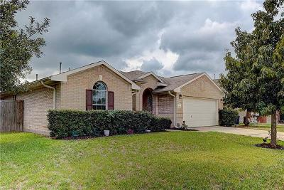Hutto TX Single Family Home For Sale: $249,900