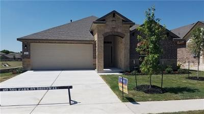 Round Rock Single Family Home For Sale: 808 Winnsboro Dr